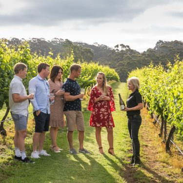 Singlefile Wines A Sense of Place